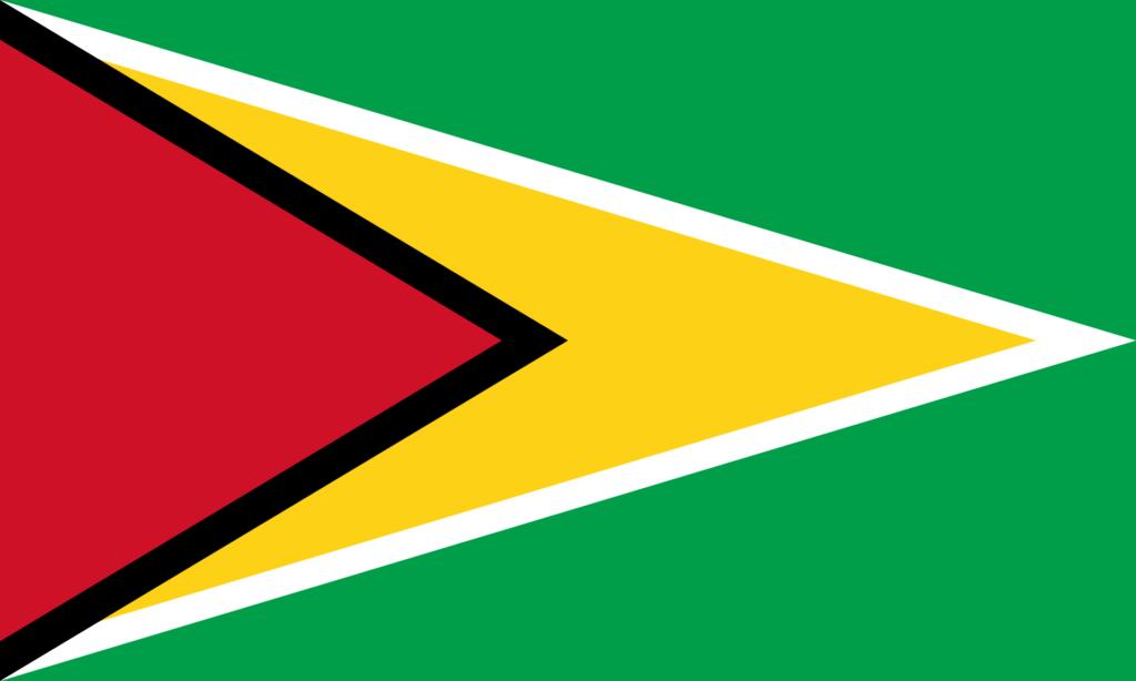 флаг гайаны-1