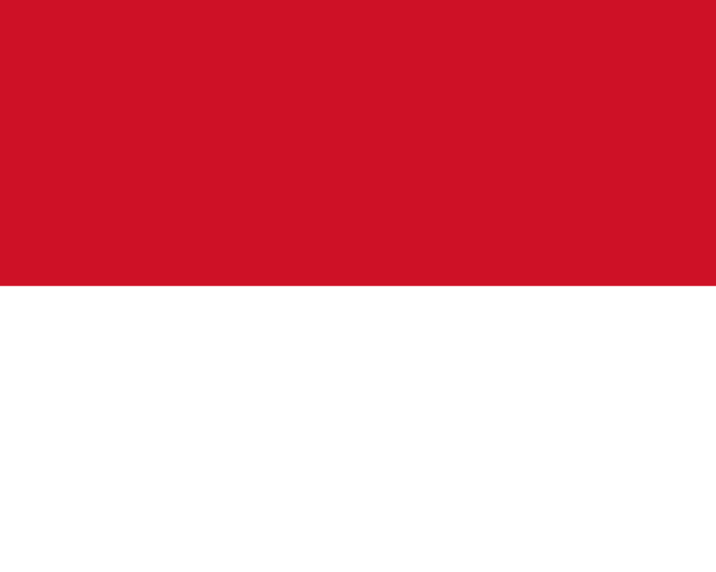 флаг индонезии-4
