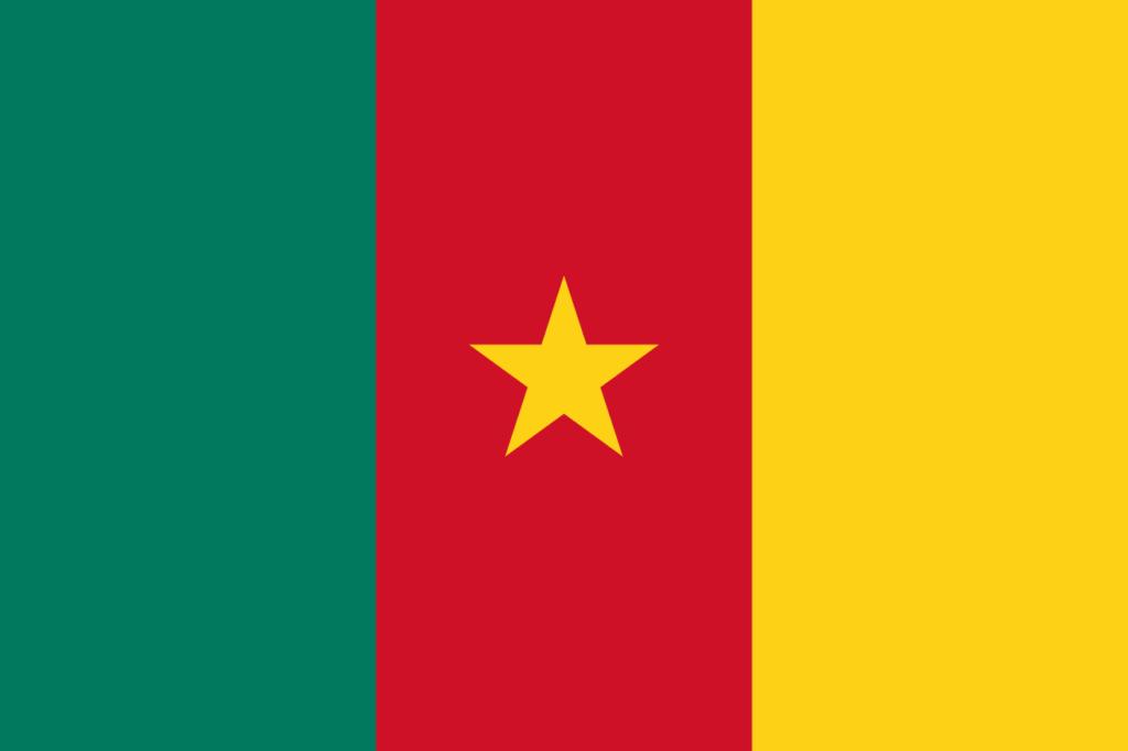 флаг камеруна-1