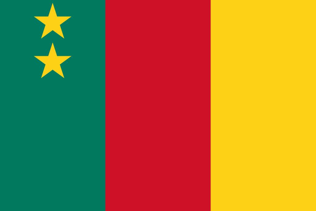 флаг камеруна-6