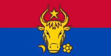 флаг молдавии-17