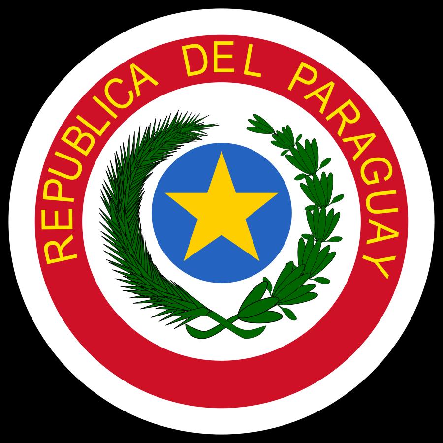 флаг парагвая-14