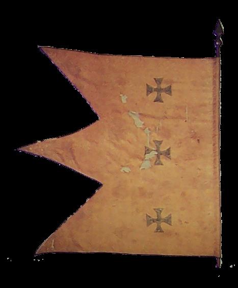 флаг сербии-9
