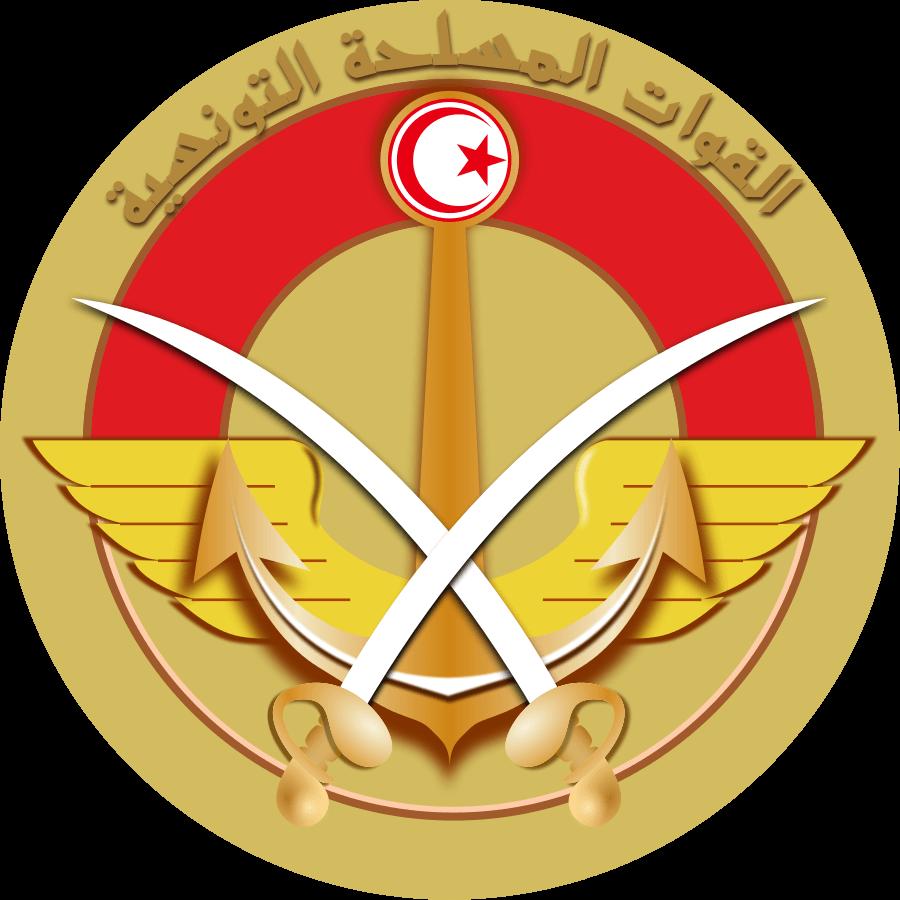 флаг туниса-8