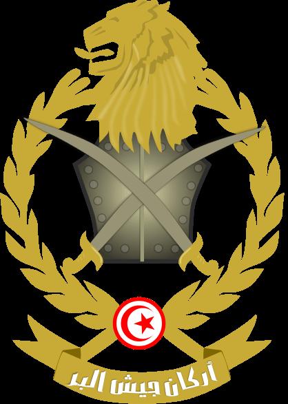флаг туниса-9