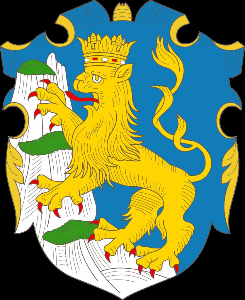 флаг украины-2