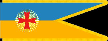 флаг украины-25