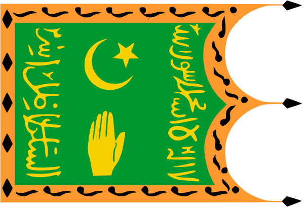флаг таджикистана-4