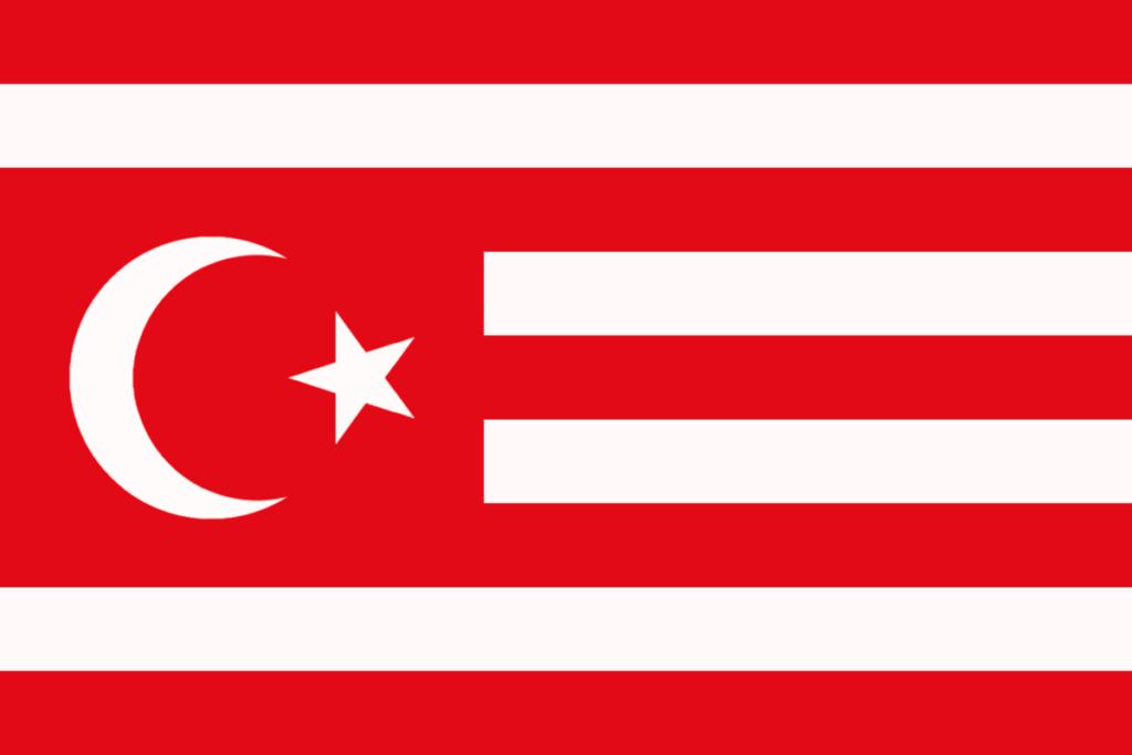 флаг таджикистана-5