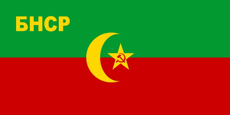 флаг таджикистана-6
