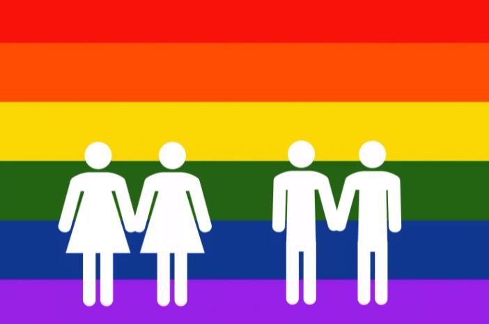 флаг гомофобов как выглядит