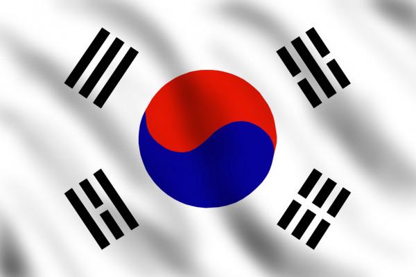 как выглядит флаг северной кореи